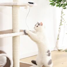 Electric Automatic Lifting Cat Ball Toy Interactive Puzzle Smart Pet Cat Ball Teaser Toys Pet Supply Lifting Balls Electric Toys