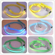 Nylon LED Light Up Dog Leash Night Safety LED Flashing Glow In Dark Dog Collar Pet Supplies Cat Drawing Small Lead LED Dog Leash